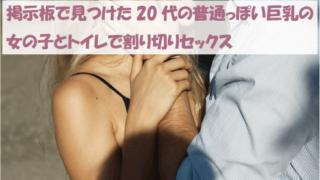 掲示板で見つけた20代の普通っぽい巨乳の女の子とトイレで割り切りセックス